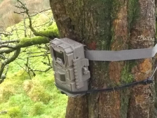 Trail cameras capturing the impact of the dams