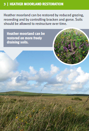3. Heather Moorland Restoration.png