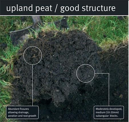peat good.jpg