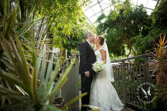 Wedding photography in Greenwhich CT, Wedding Photography at Greenwich Hyatt, Wedding photography at Binney Park