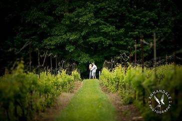 Wedding photography at Chamard Vineyard, Engagement photography at Chamard Vineyard, CT Vineyard photography, CT Vineyard Wedding photography, Vineyard Wedding photography, Engagement photography at a Vineyard.