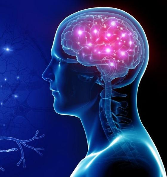 neurology-1024x665_edited.jpg