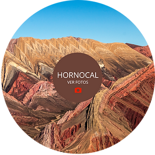 HORNOCAL.png