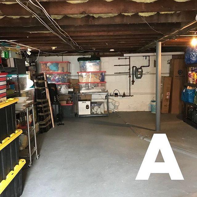 Garage/Attic/ Basement Organizing