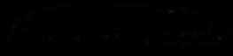 black-brush-stroke-banner-4.png