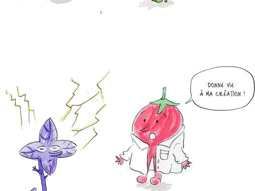 Tom Astuce présente les OGM