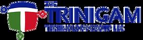 trinigam-logo.png