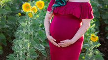 Querida's Sunflower Maternity Session | Sacramento Maternity Photographer
