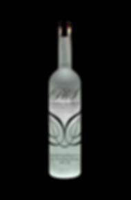 Bottle 1_edited.png