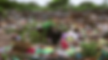 Screen Shot 2019-05-15 at 17.12.22.png