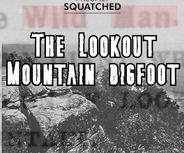 The Lookout Mountain Bigfoot - A Historic Encounter with the Georgia Bigfoot