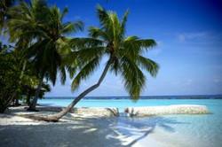 hawaie