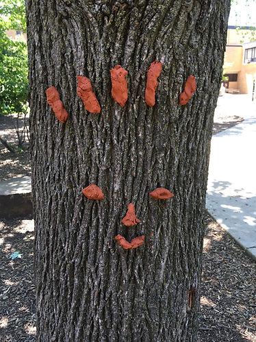 Tree Face.jpg