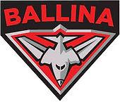 Ballina Bombers.jpeg