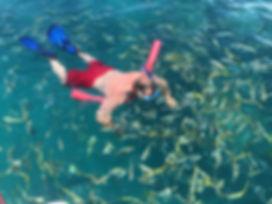 Snorkeling Marathon Keys Reefs.JPG