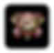 Screen Shot 2020-05-18 at 10.24.33 PM.pn