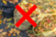 bag of leaves-red x-1 copy.png