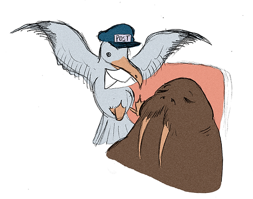 walrus copy.png