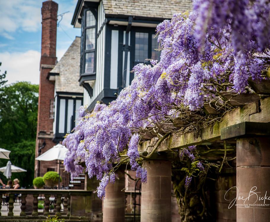 Inglewood Manor Wedding Photography ___7