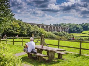 Explore Wrexham's Country Parks