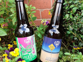 Wrexham's Magic Dragon Brewery Launches New Ales!