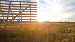 Reborn: Wyoming Sunrise