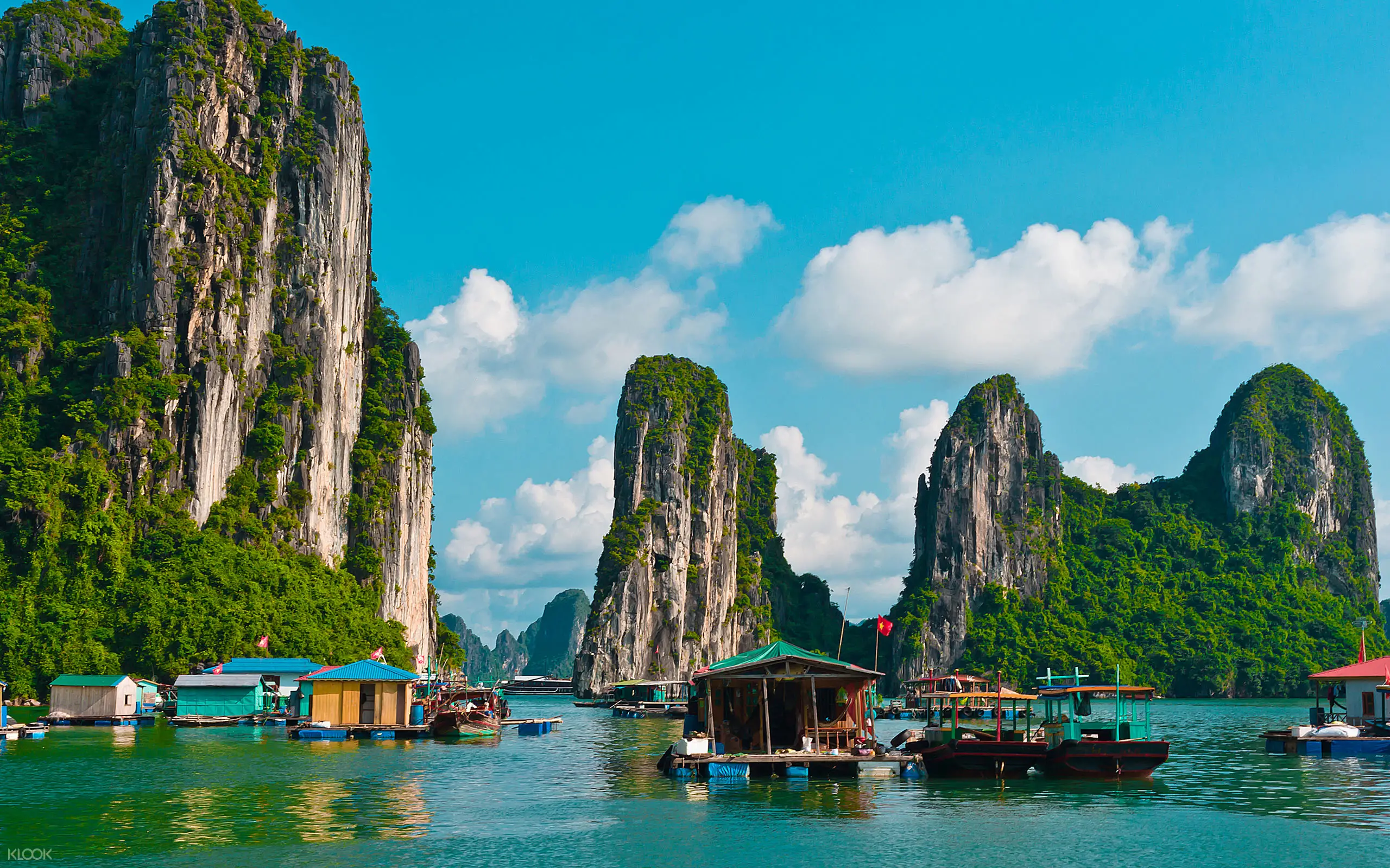 Halong Bay Adventure One day Tour