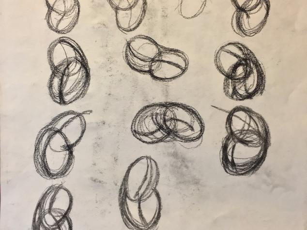 Proko Bean Torsos