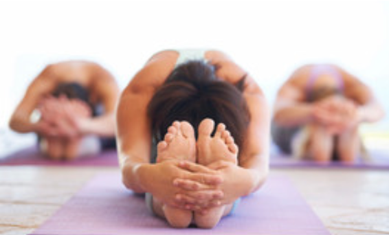 Yoga & the Immune System