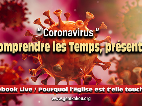Coronavirus, comprendre les temps...