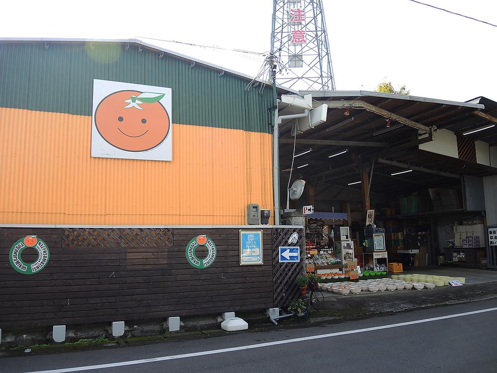 湯河原みかん 石澤商店