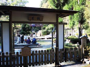 湯河原 万葉公園の再整備が行われます
