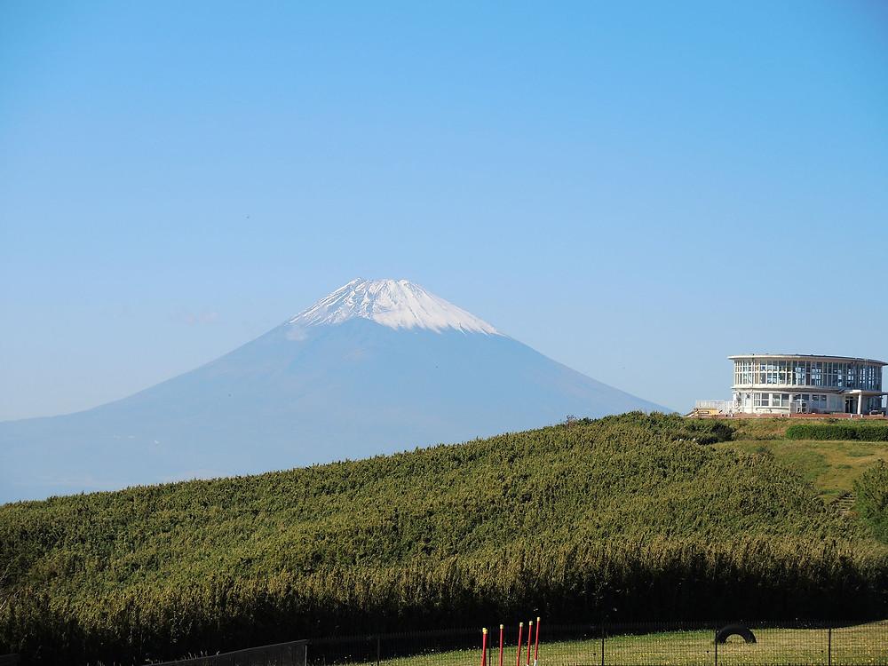 熱海十国峠では美しい富士山が見えます