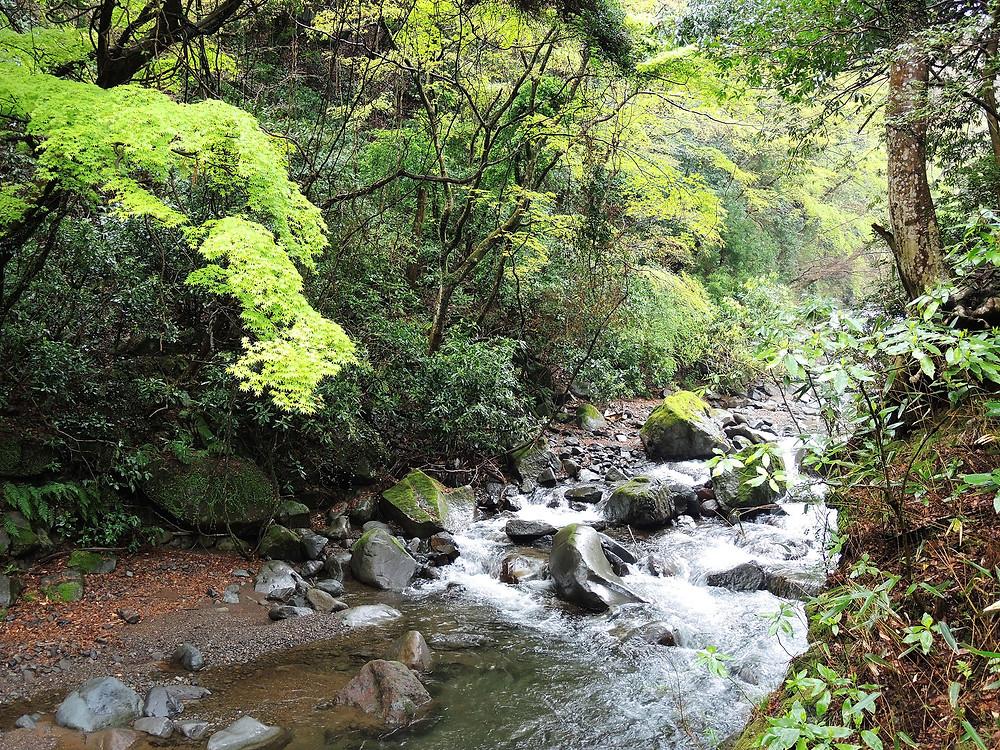 湯河原藤木川の風景 湯河原別荘不動産Irodori