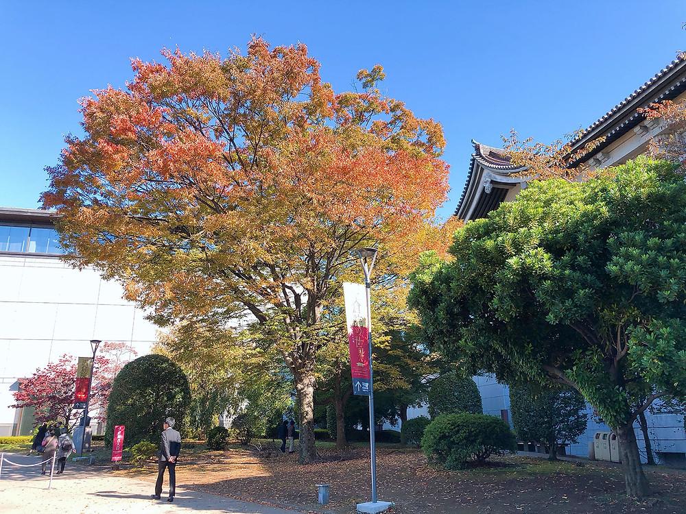 熱海から行く国立博物館