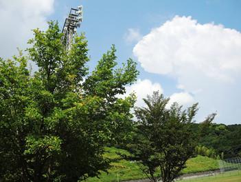 湯河原総合運動公園(ゆめ公園)