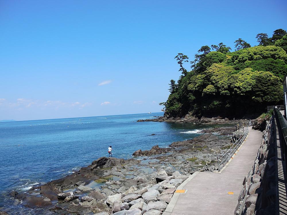 真鶴琴ヶ浜海岸
