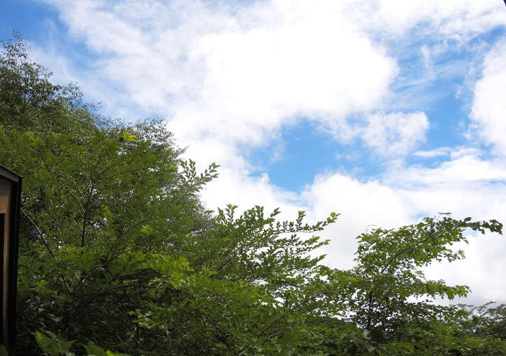 箱根リゾートホテル 売ホテル