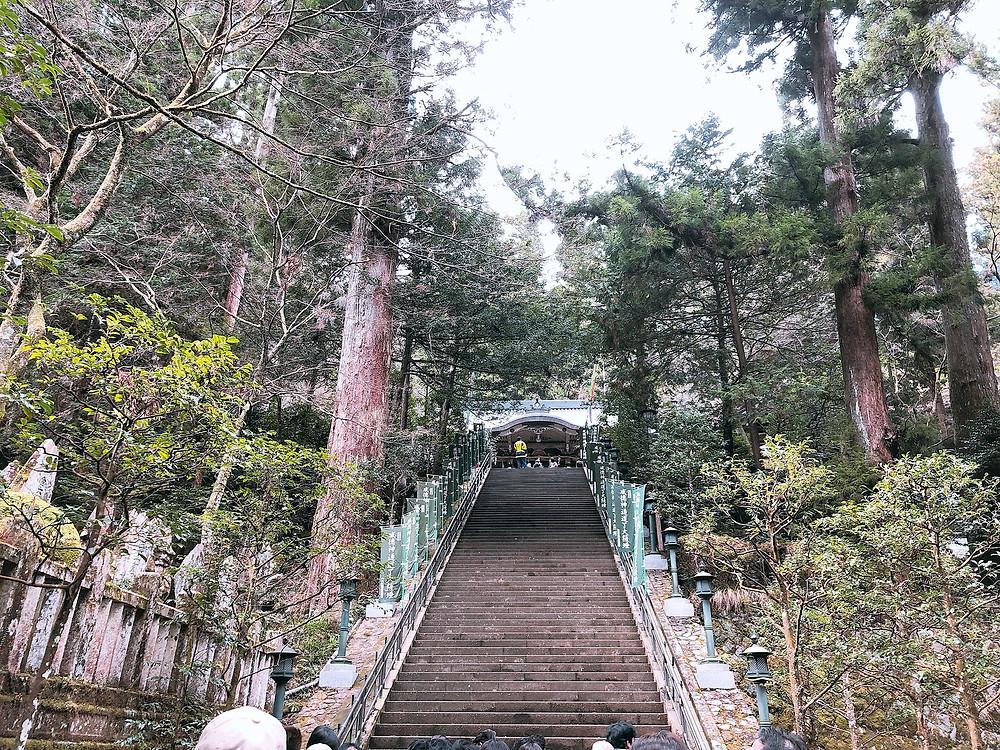 大雄山最乗寺 熱海別荘・不動産・別荘清掃管理のIrodoriイロドリ