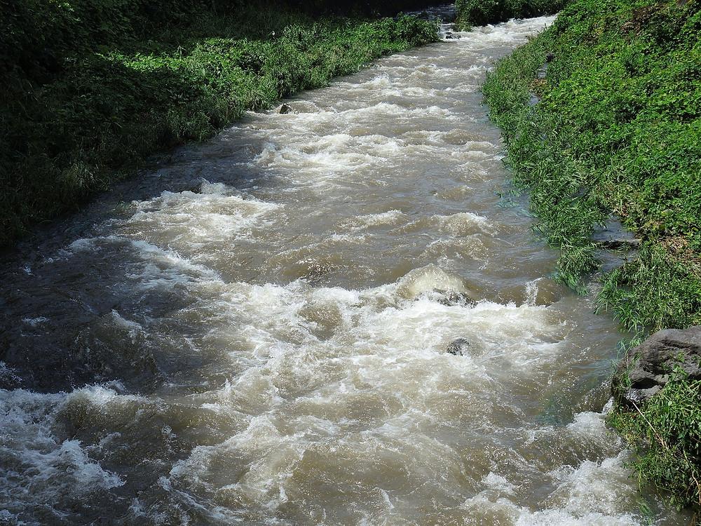 台風15号後の湯河原千歳川