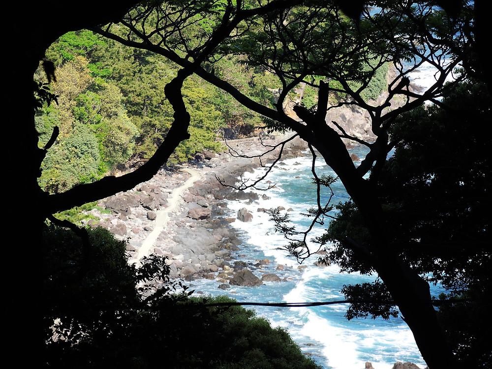 真鶴半島の森 真鶴別荘不動産Irodoriいろどり