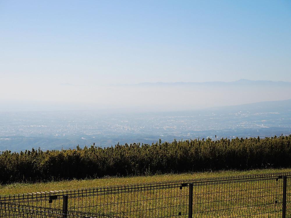 熱海十国峠山頂から眺める三島と沼津の街