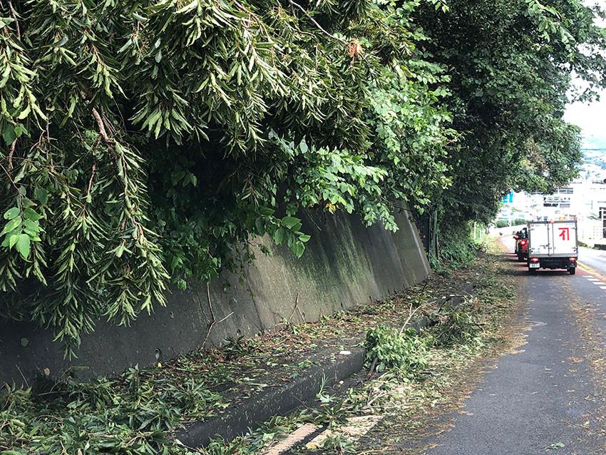 台風15号後の国道135号線