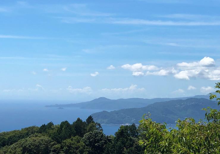 南熱海と伊豆の岬
