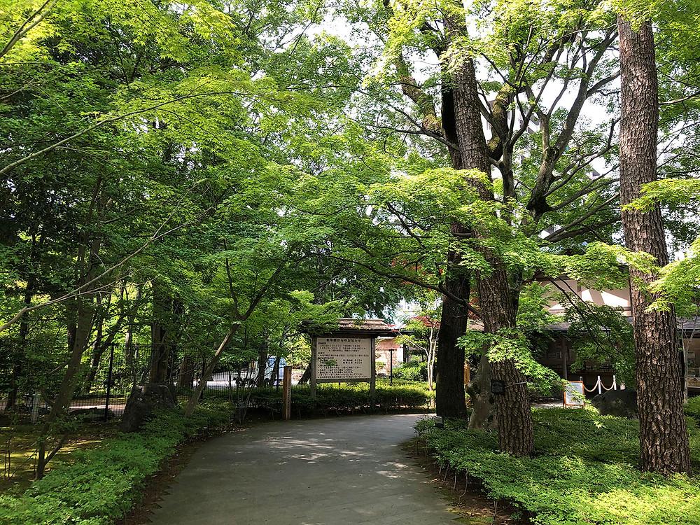 三島楽寿園 熱海別荘不動産Irodoriいろどり
