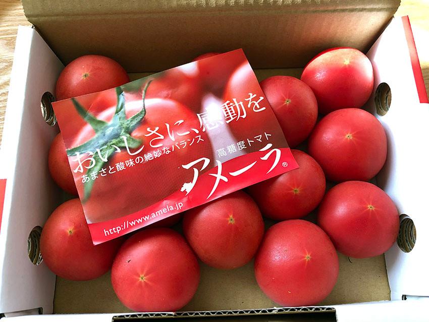 高糖度トマト「アメーラ」 熱海別荘不動産Irodoriいろどり