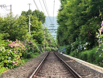 箱根登山電車の全線で運転再開