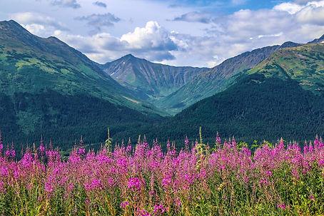 Anchorage (1).jpg