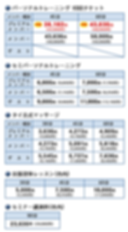 スクショ価格表2.png