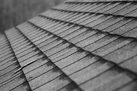 Roof%20Shingles%20%20_edited.jpg